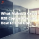 b2b copywriter